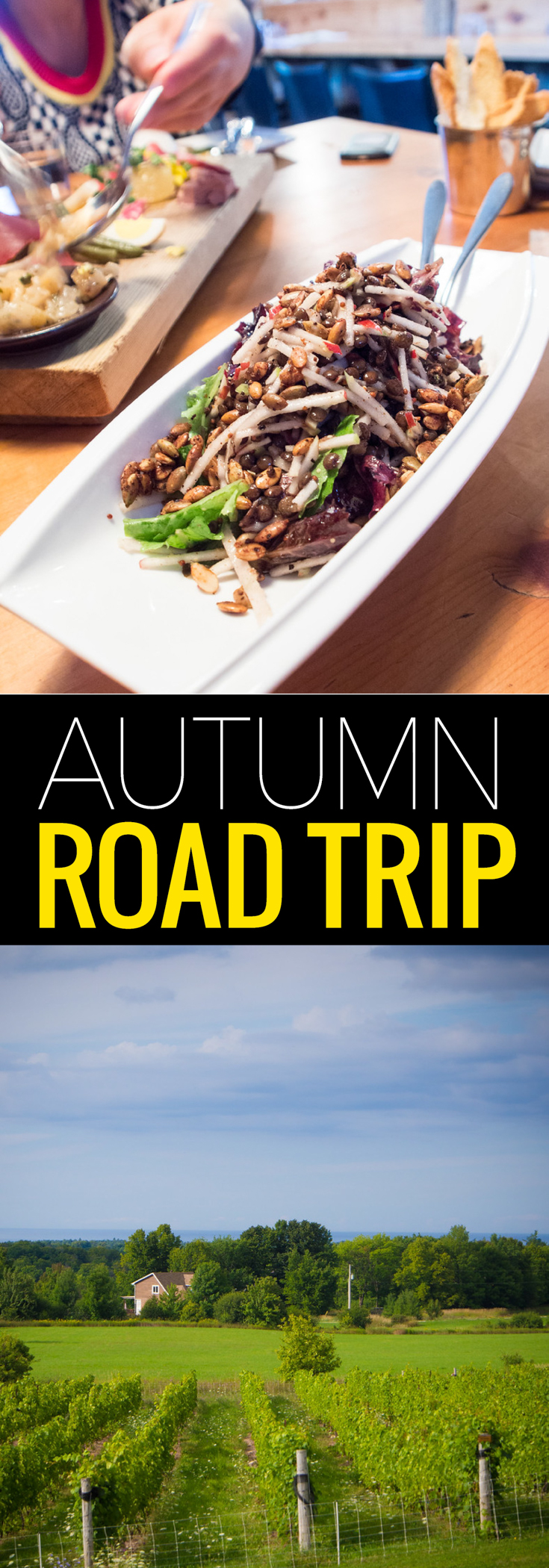Plan the ultimate road trip with an autumn colors tour in Grey County.