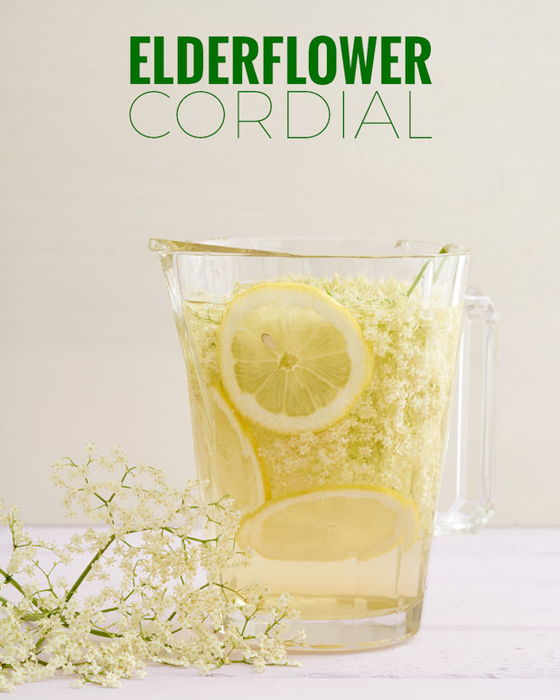 Elderflower Cordial Recipe - Bacon is Magic - The Best ...