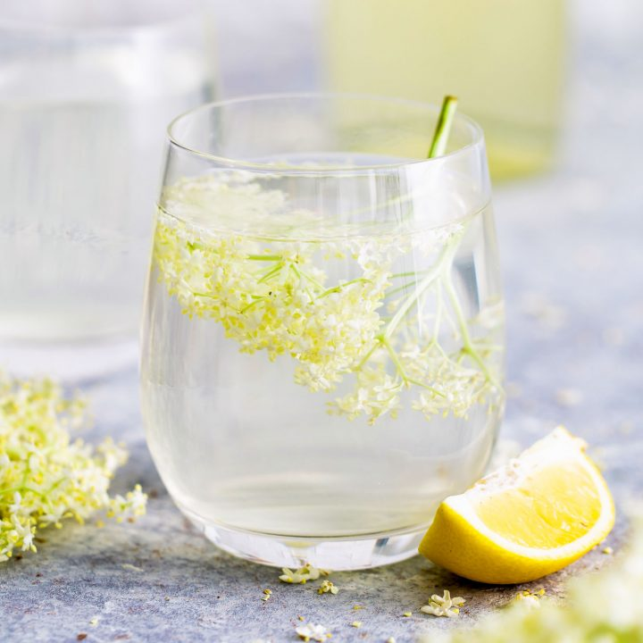Cordial made with Elderflower in a shallow glass and a slice of lemon