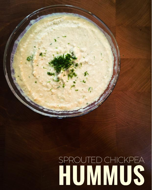 Sprouted Chickpea Hummus with Pine Needle