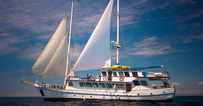 Tips on finding the perfect Galapagos cruise. What to look for and how much you should pay.