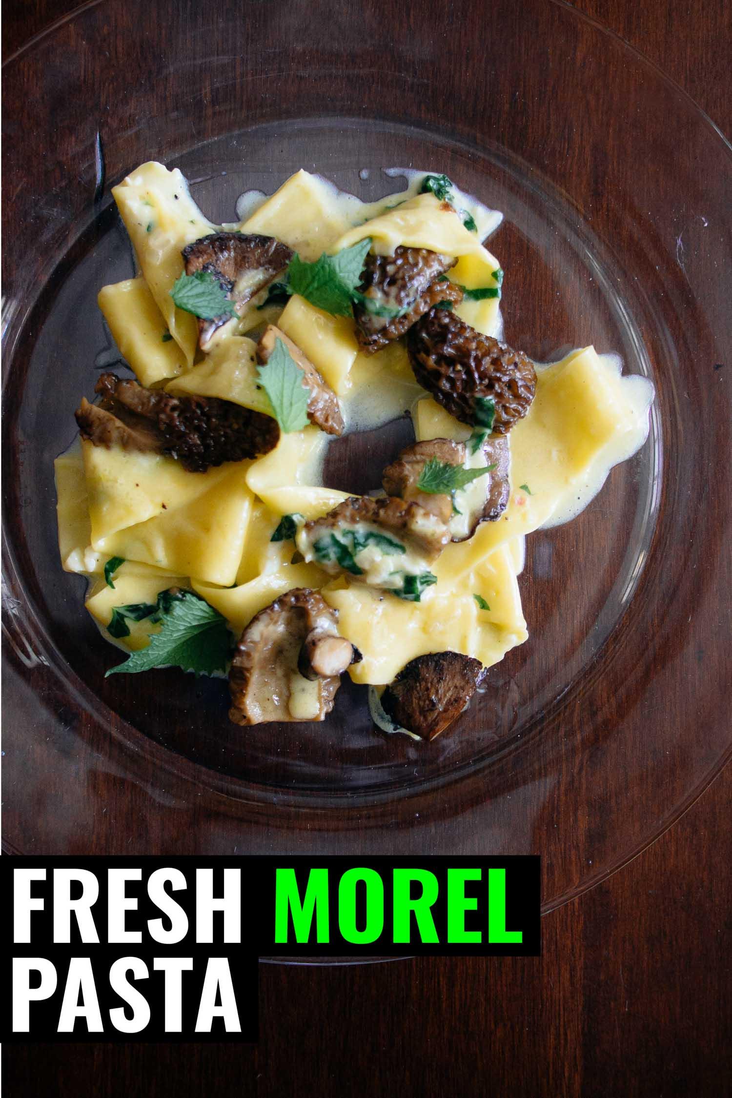 Morel mushroom pasta on a clear plate.