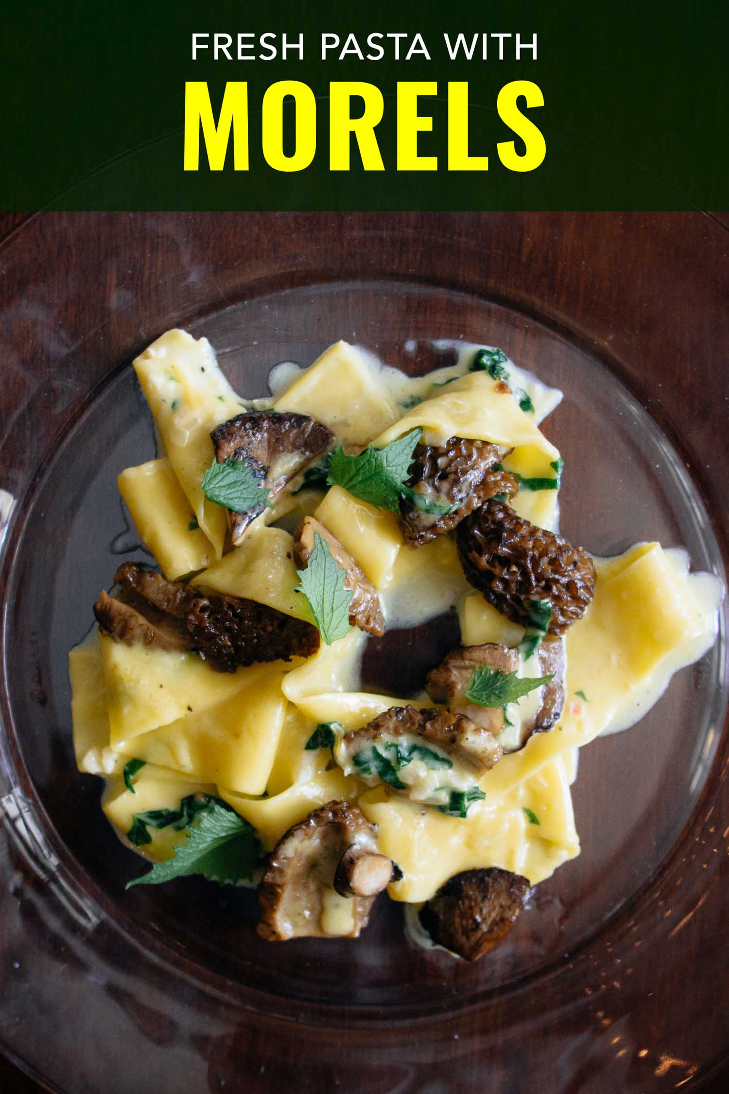 Fresh pappardelle pasta with morel mushrooms on a glass plate.