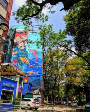 A Guide to Falling in Love with La Condesa Mexico City