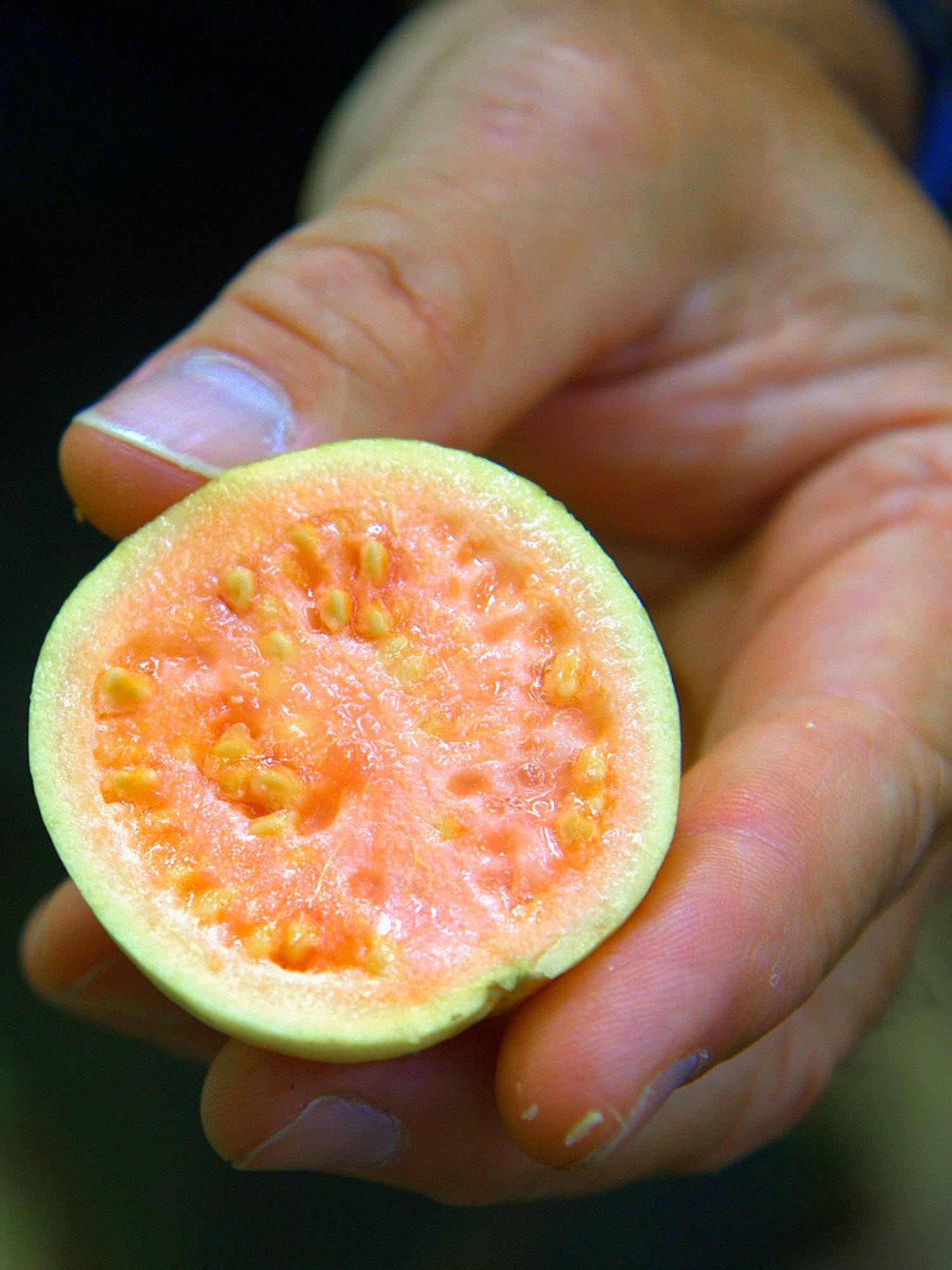 21 Exotic Fruits Around the World (Where + When to Eat Them)