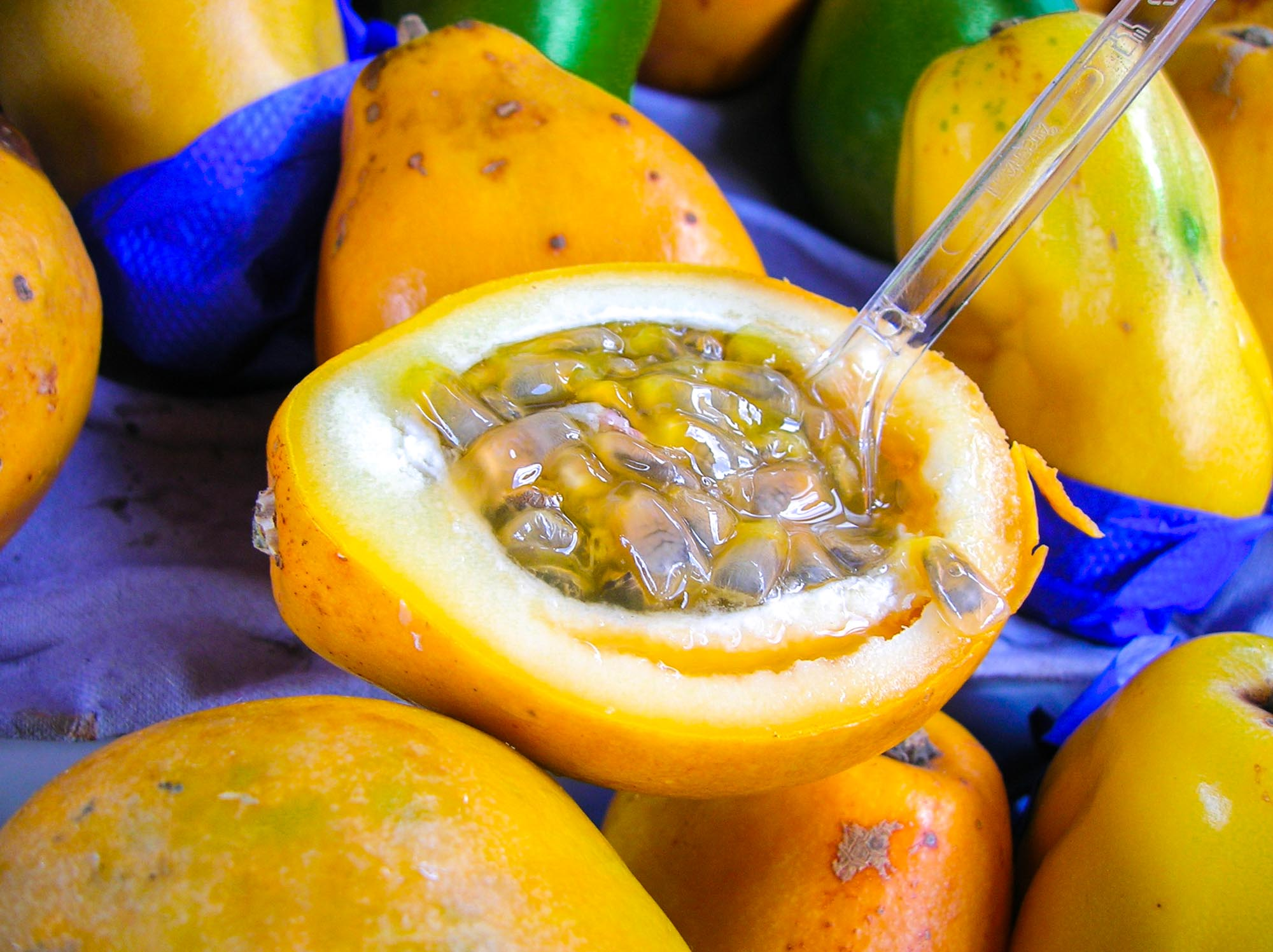 Passionfruit is one of the most common exotic fruits in the world. Originating in South East Asia you can now find it in Central and South America.