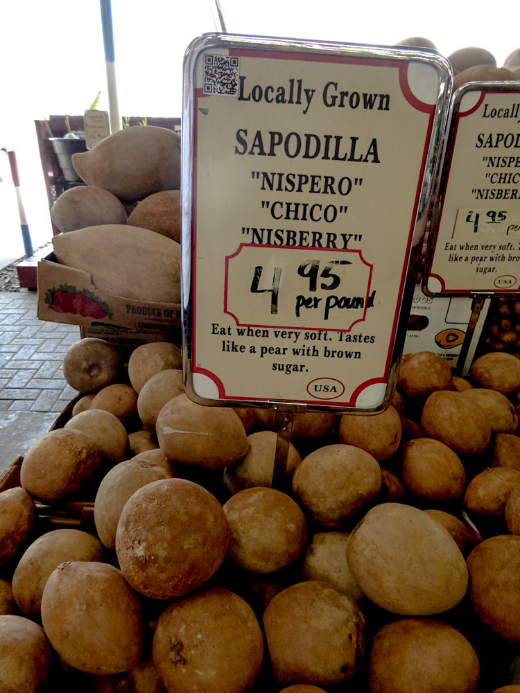Sapodilla is one of the tastiest exotic fruits from Mexico, Central America and the Caribbean.