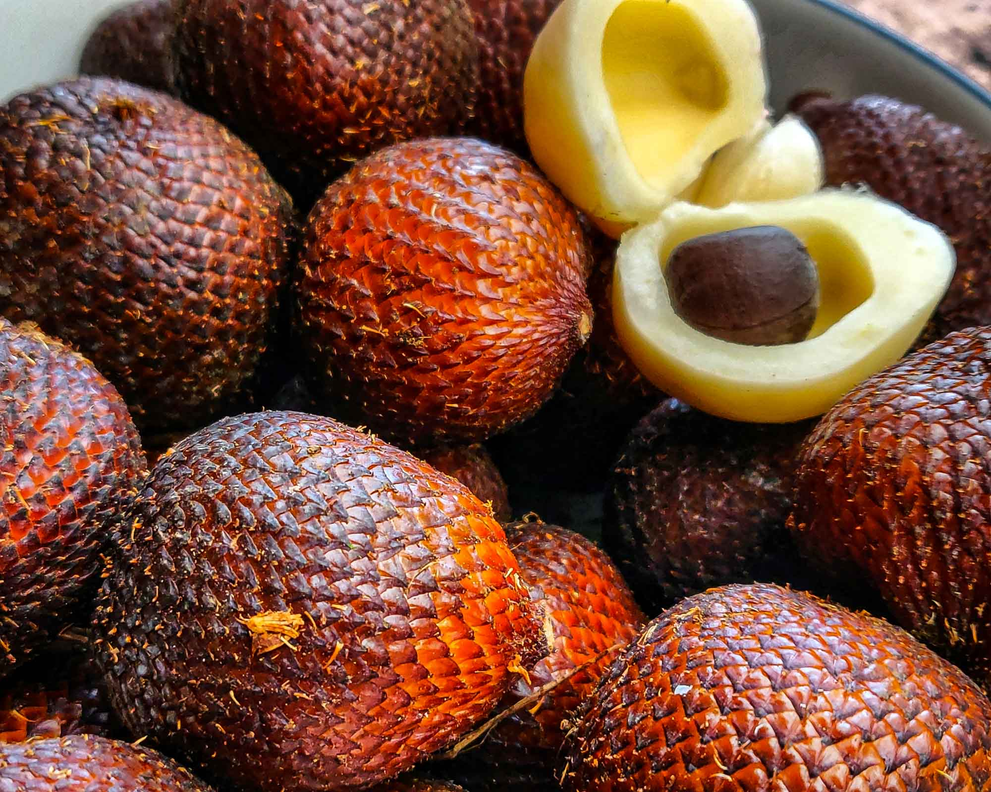 Snakefruit is also known as salak and one of the exotic fruits native to Java and Sumatra but you can also find them in Bali, Lombok, Timor, Maluku, and Sulawesi.