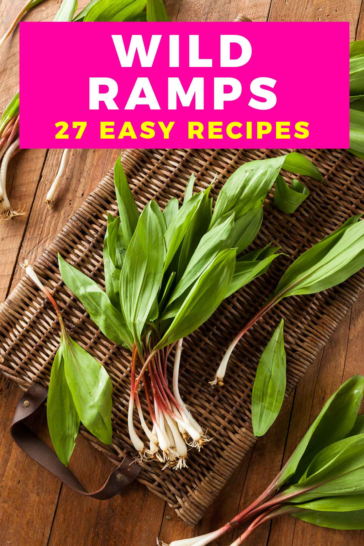 Wild ramps on a table