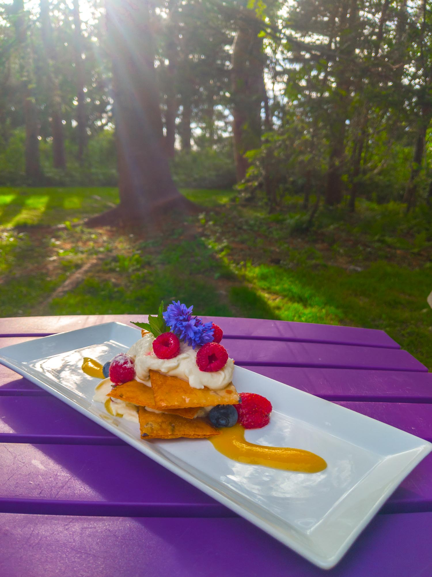 Nova Scotian dessert with fresh fruit and whipped cream at Burntcoat Head Dining on the