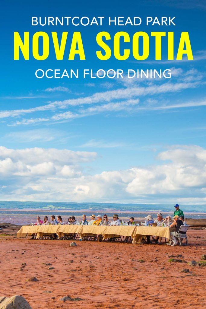 Dining on the ocean floor at Burntcoat Head in Nova Scotia Canada