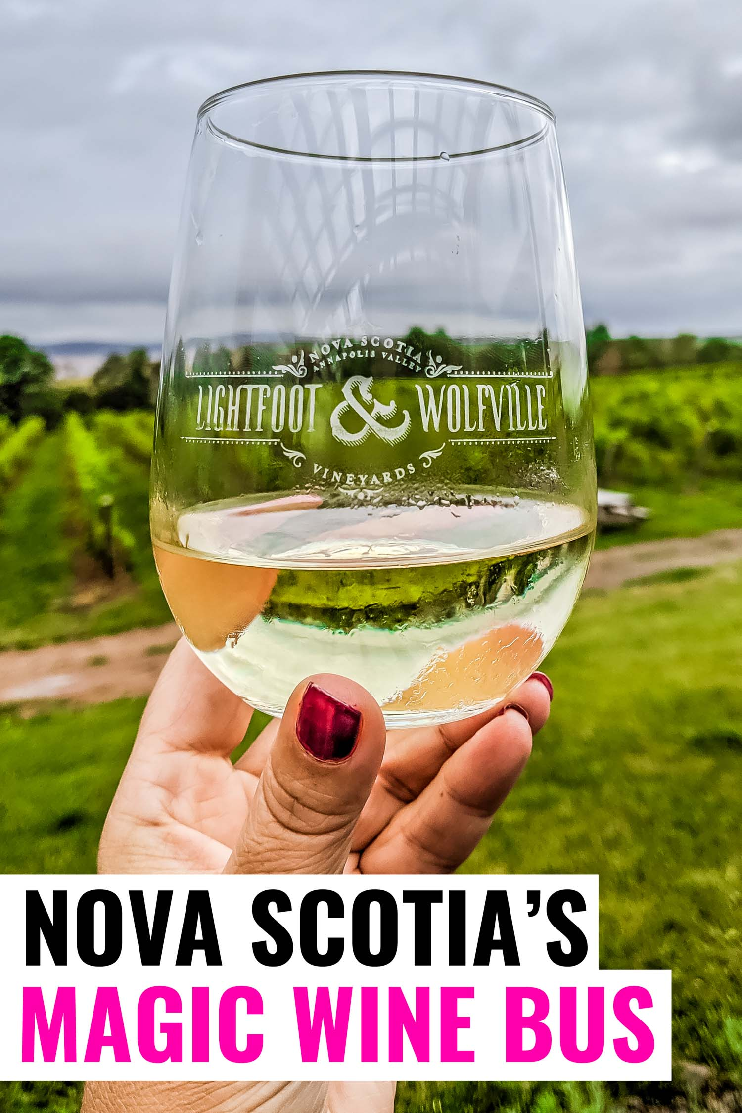 Glass of Nova Scotian wine in hand with winery vineyards in background.