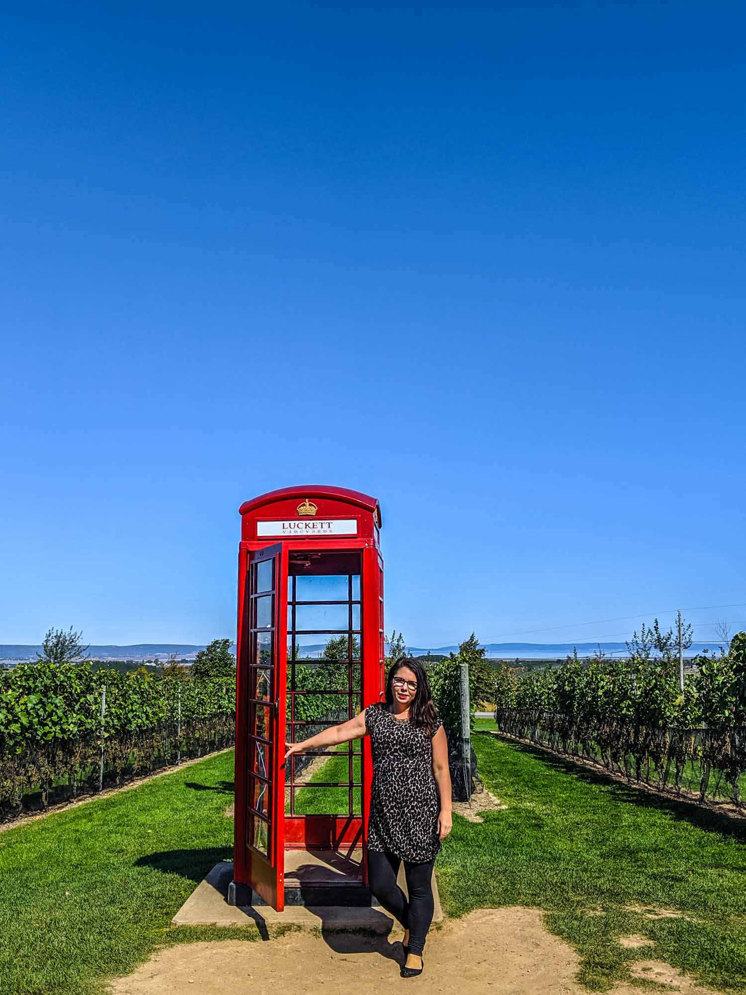 Red British phone booth at Luckett Vineyards, one of the stops on the Magic Winery Bus in Nova Scotia.