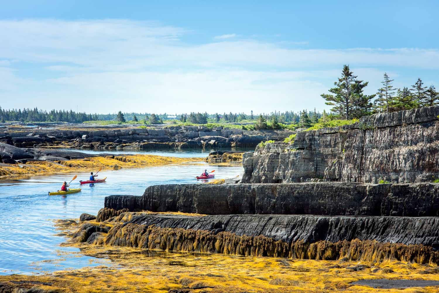 Pleasant Paddling tour in Blue Rocks Nova Scotia