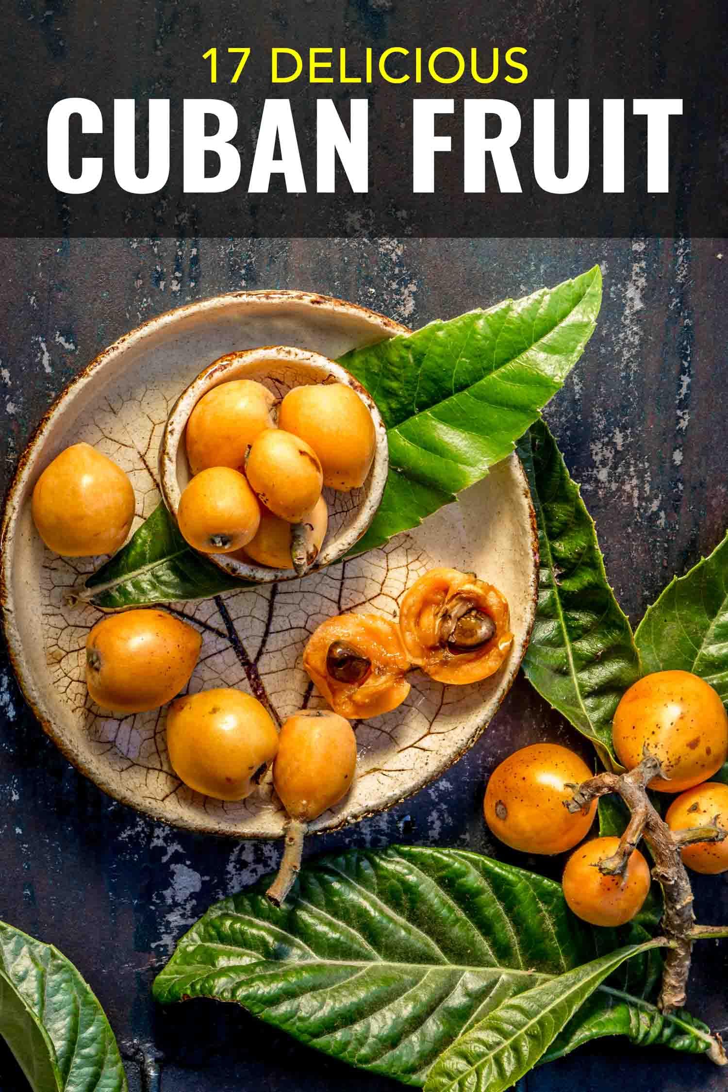 Cuban fruit nispero with leaves