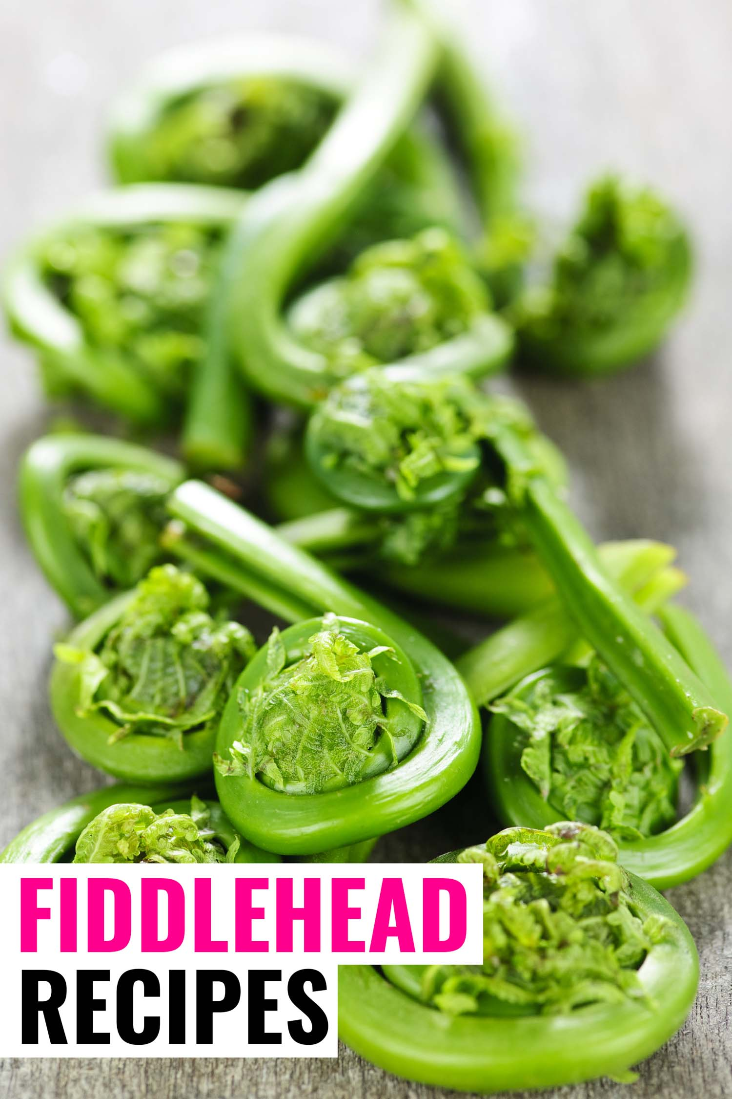 raw fiddleheads on a tabletop