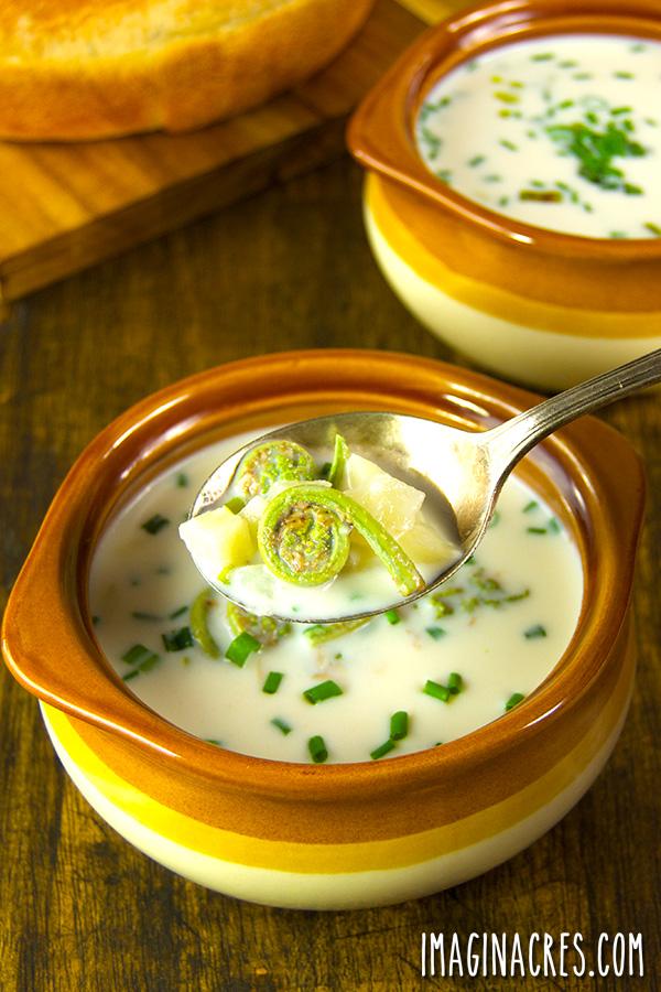 creamy fiddlehead soup in chowder bowls