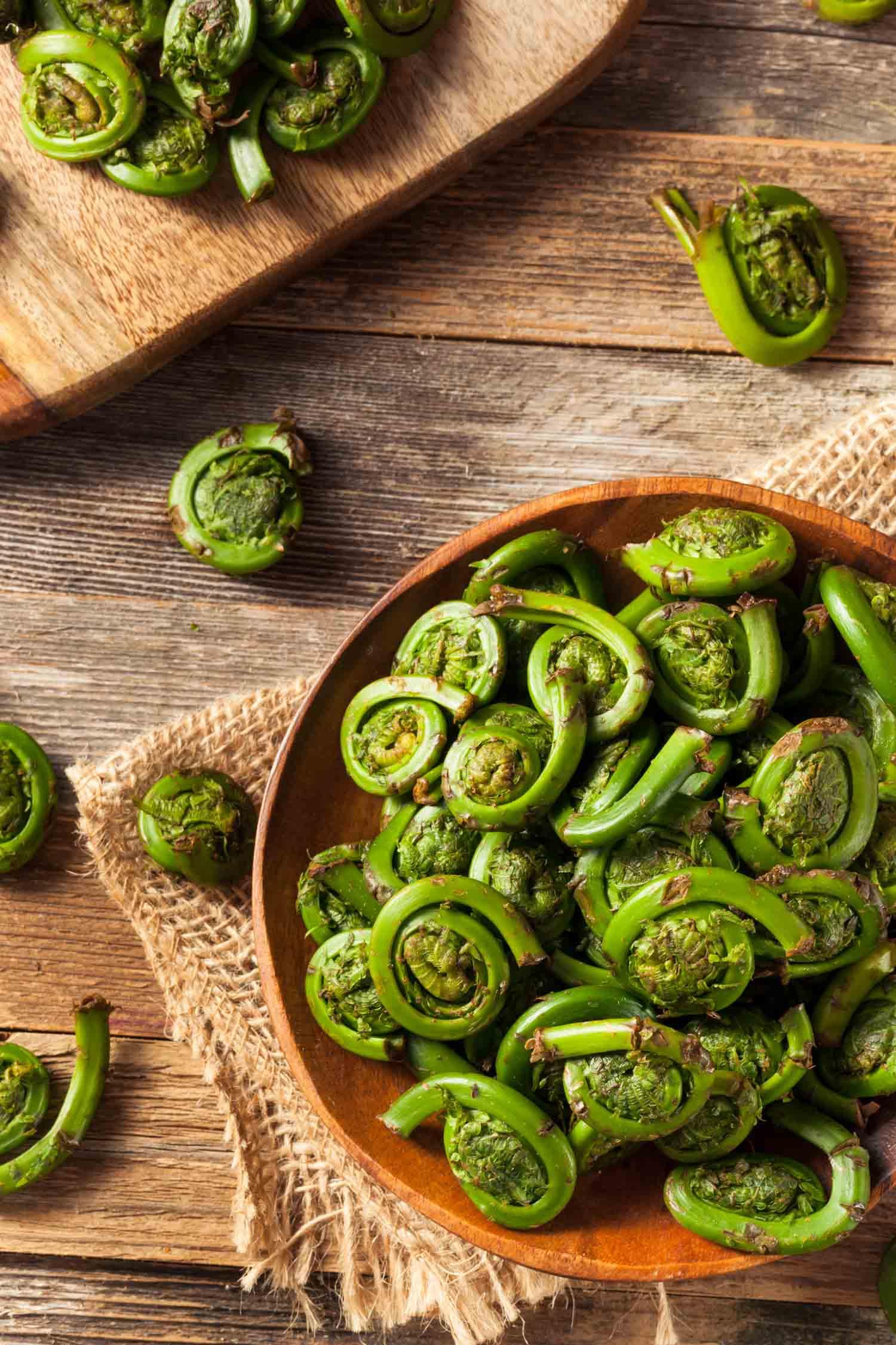 Raw Organic Green Fiddlehead Ferns Ready for Cooking