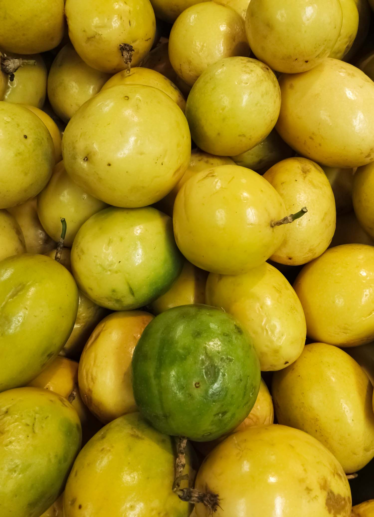 Delicious and juicy passion fruit heap. Maracuya, Passiflora edulis produce. Acid flavor, group of tropical fruits.