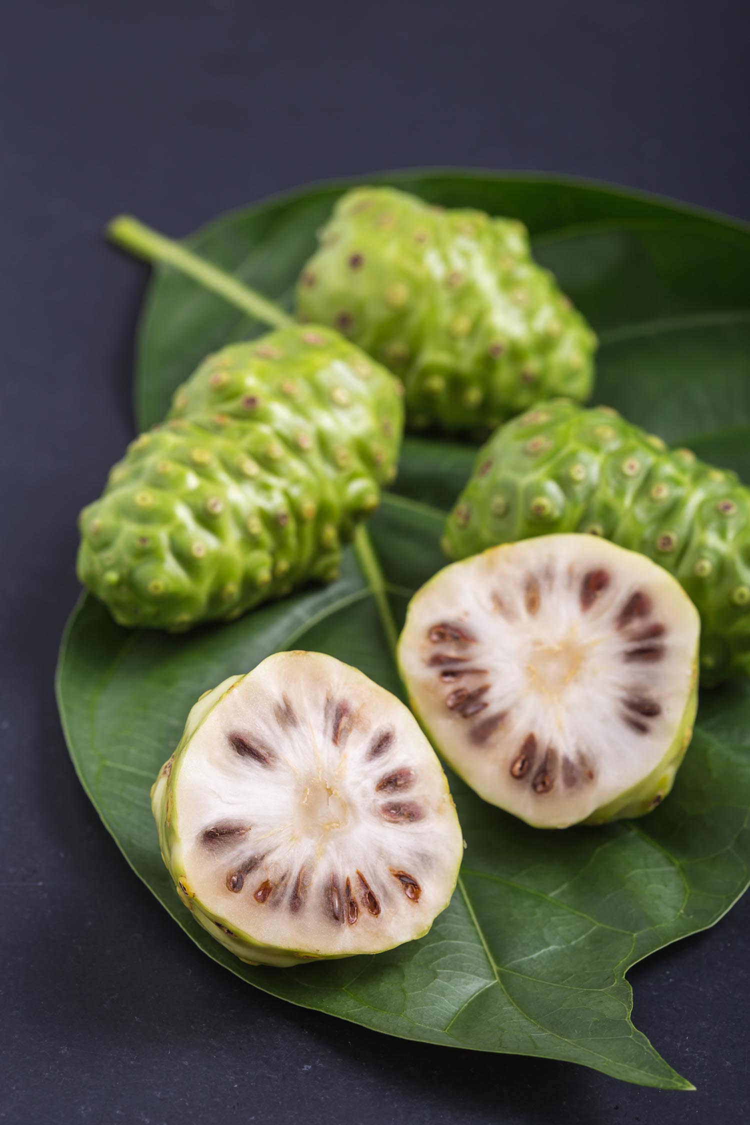 Fruit of Great morinda (Peru fruit Noni) or Morinda citrifolia tree and green leaf on black stone board background