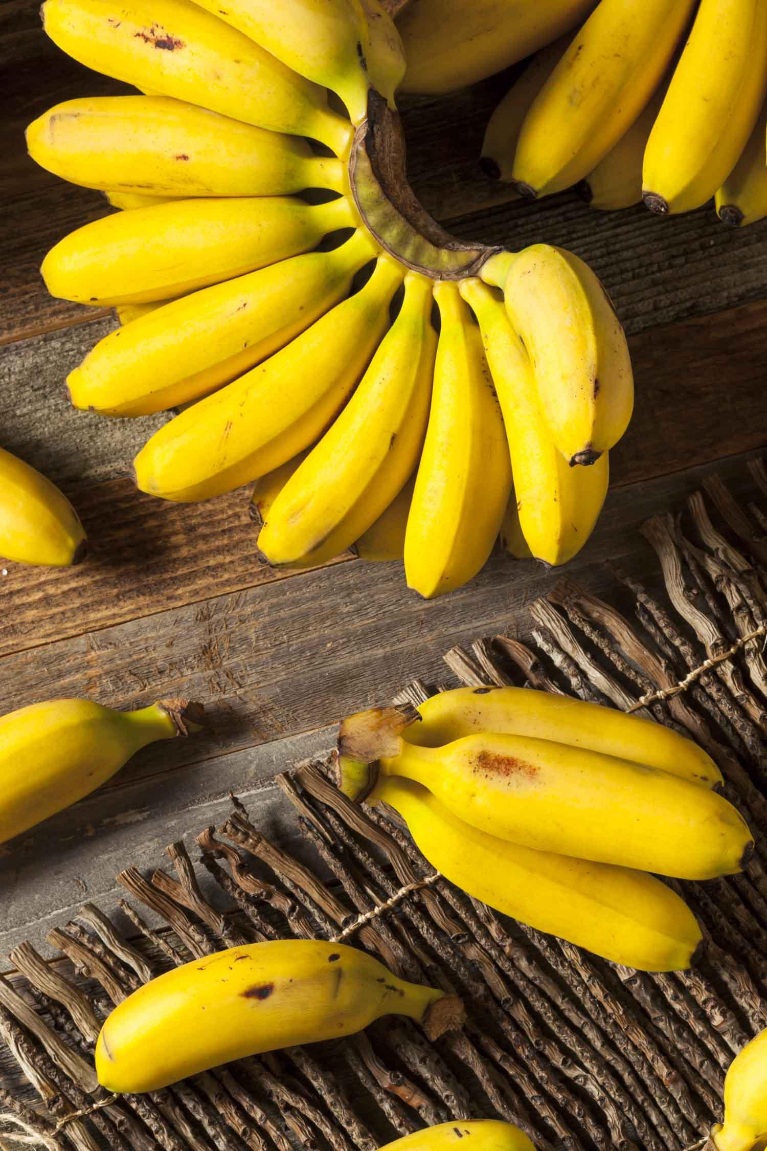 Hawaiian apple bananas in bunches