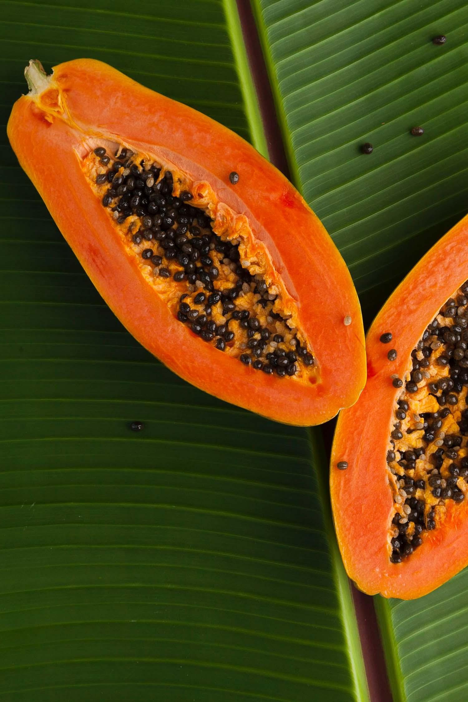 Hawaiian papaya fruit on green palm leaves