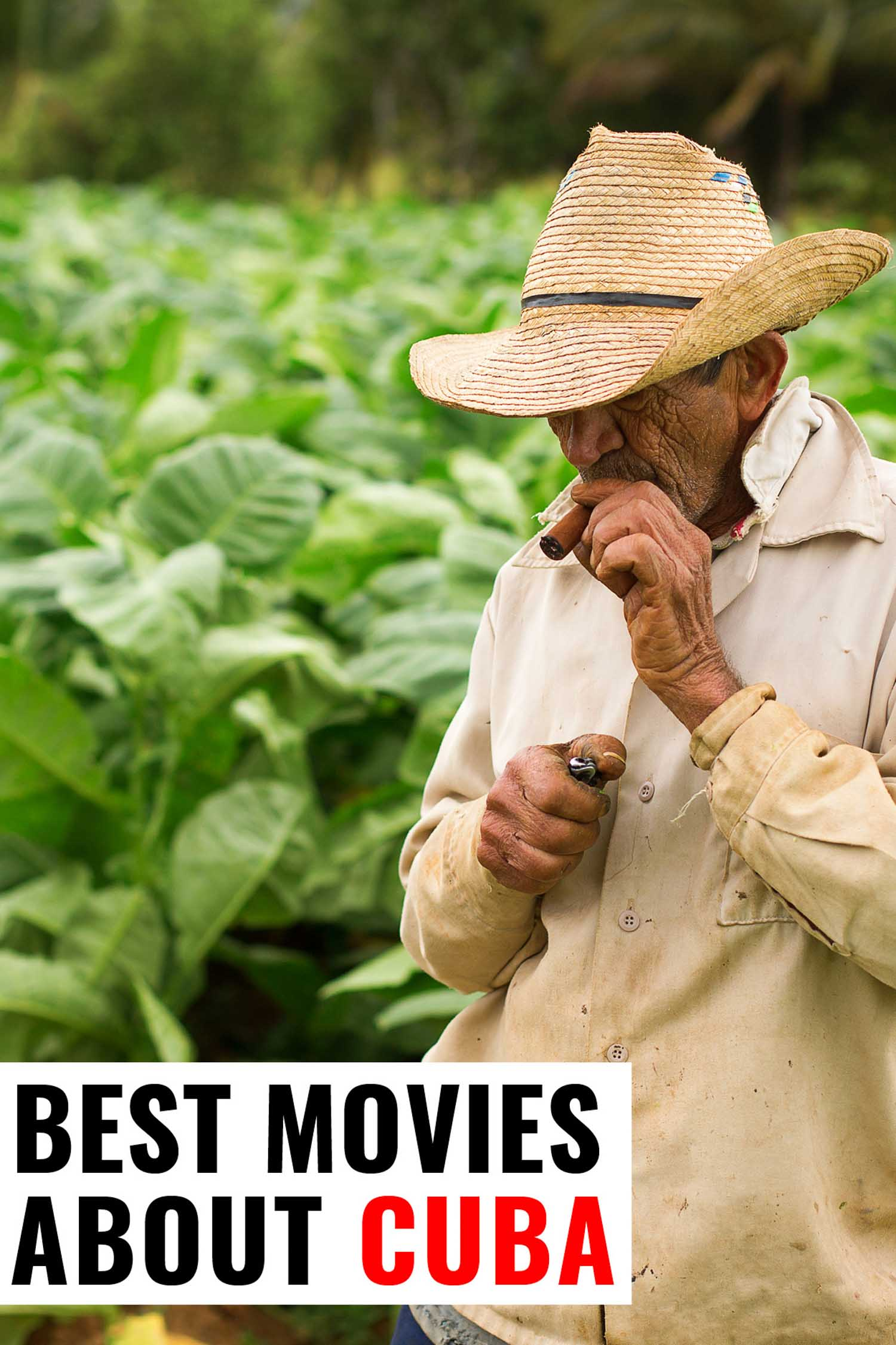 Tobacco farmer in Vinales Cuba with text that says best movies about Cuba
