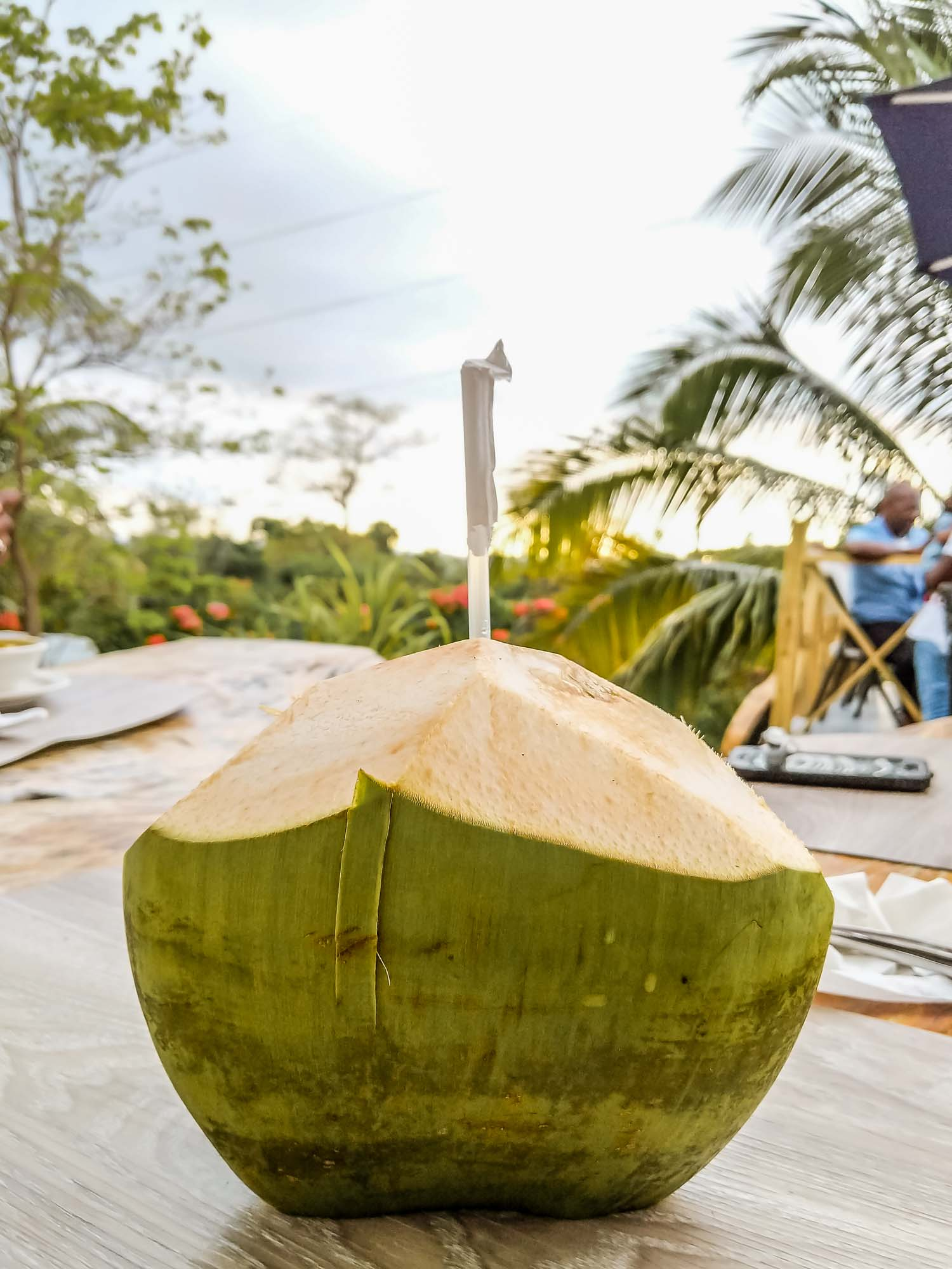 Coconut water in Jamaica at a restaurant.