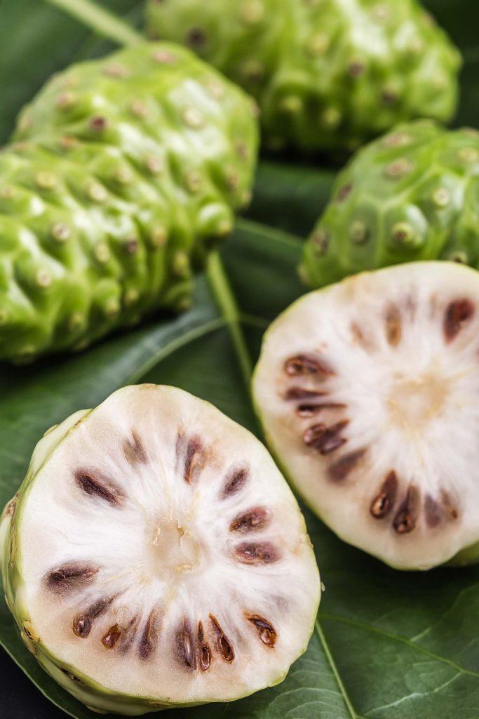 Jamaican Fruit of Great morinda (Noni) or Morinda citrifolia tree and green leaf on black stone board background