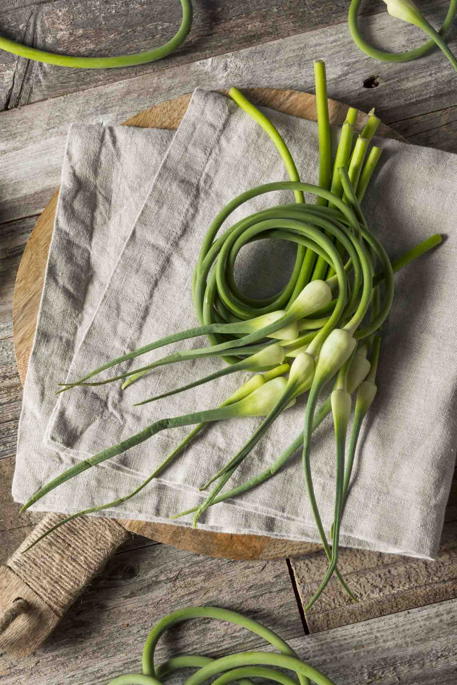 Garlic scapes on a linen napkin on a table.