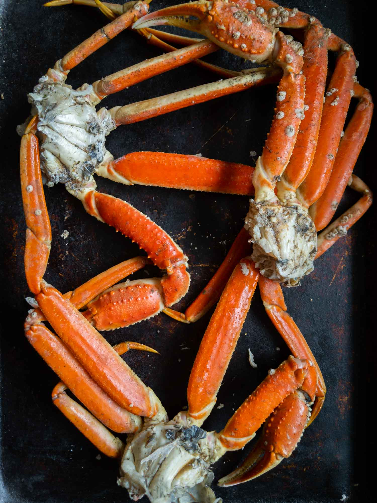 Cape Breton snow crab cooked on a cooking sheet