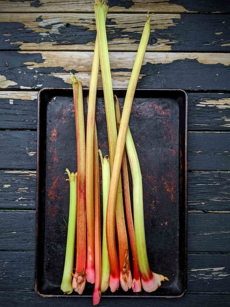 rhubarb on a baking sheet on a worn down wooden background