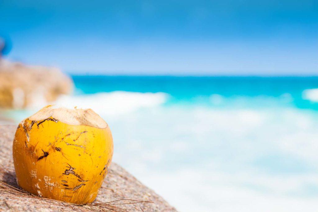 Fresh coconut cocktail on a tropical beach
