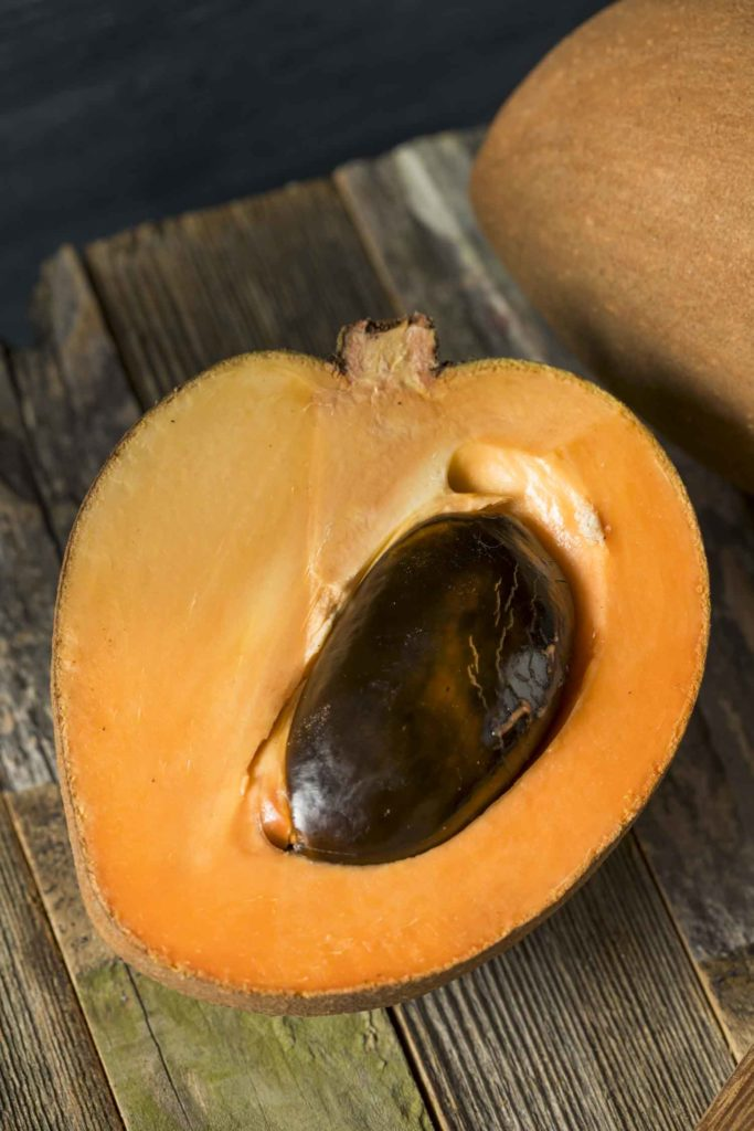 Chico fruit, Raw Organic Brown Mamey Fruit with a Brown Seed