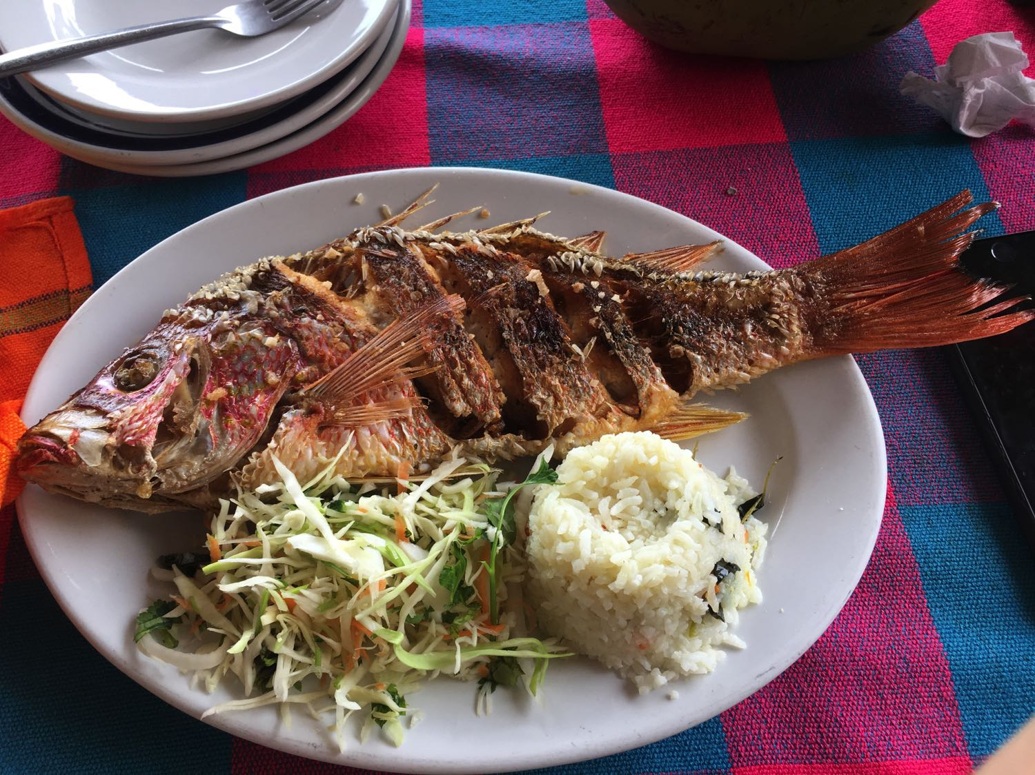 Grilled Snapper Food in Seychelles