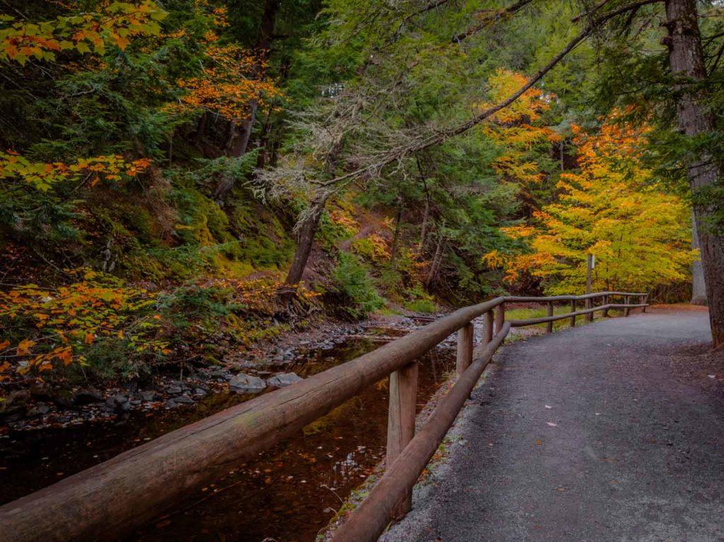 Victoria Park in autumn