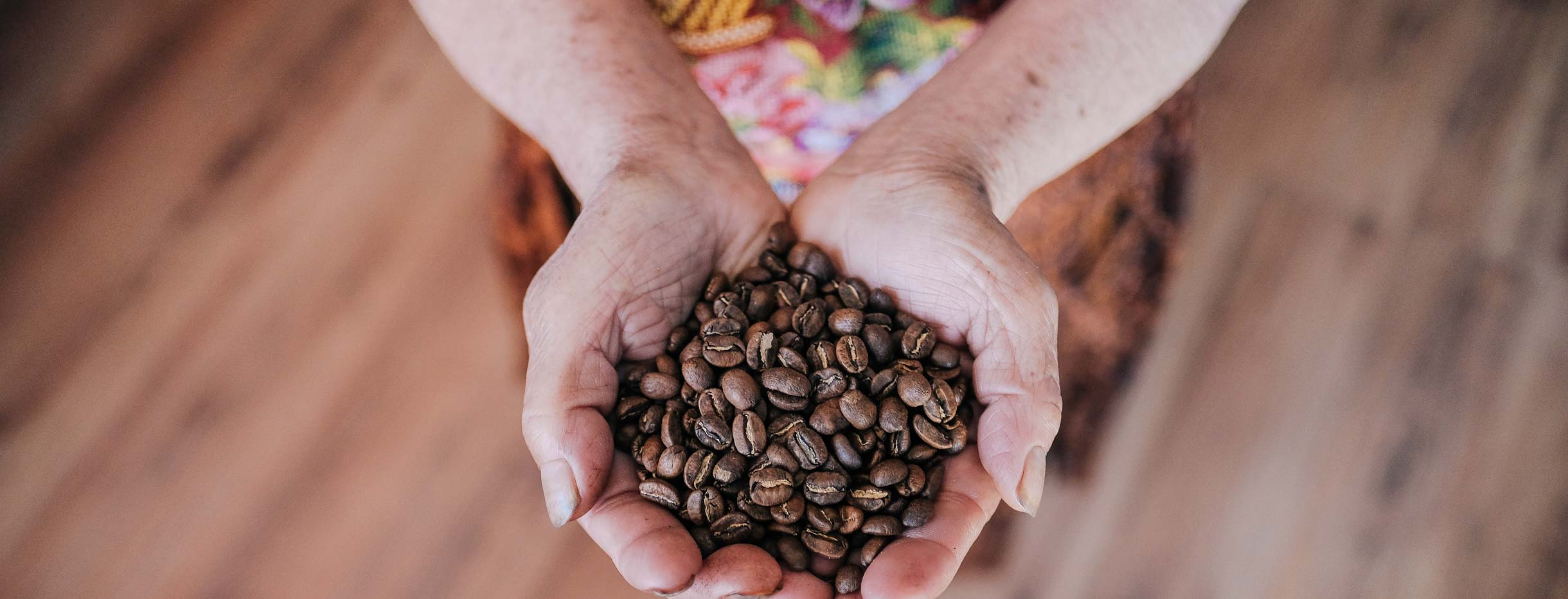 Guatemalan woman holding roasted coffee beans in her hands