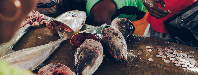 Fish market in Seychelles